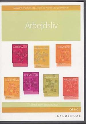 Arbejdsliv Lærer-cd af Marianne Knudsen, Anette Strange-Petersen, Ida Nielsen