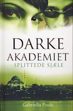 Splittede sjæle (Darke Akademiet, nr. 3)