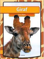 Giraf af Peter Bejder