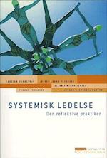 Systemisk ledelse (Erhvervspsykologiserien)