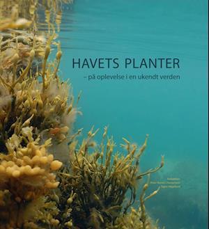 Bog, indbundet Havets planter af Peter Bondo Christensen