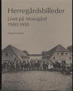 Herregårdsbilleder af Jesper Laursen