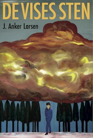 Bog, hæftet De vises sten af J. Anker Larsen