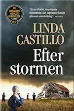 Efter stormen (En Amishkrimi med Kate Burkholder, nr. 7)