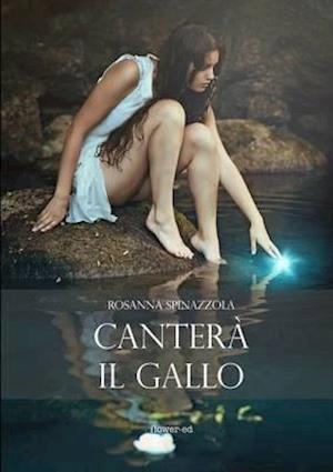 Bog, paperback Cantero Il Gallo af Rosanna Spinazzola