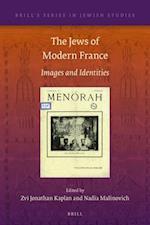 The Jews of Modern France (BRILL'S SERIES IN JEWISH STUDIES)