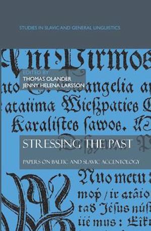 Stressing the Past af Thomas Olander, Jenny Helena Larsson