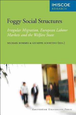 Foggy Social Structures af Giuseppe Sciortino, Michael Bommes