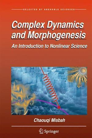 Bog, hardback Complex Dynamics and Morphogenesis af Chaouqi Misbah