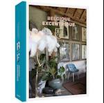 Eccentric Homes / Belgique Excentrique af Thijs Demeulemeester