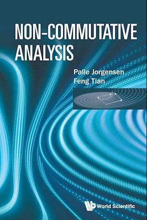 Bog, paperback Non-Commutative Analysis af Feng Tian, Palle Jorgensen
